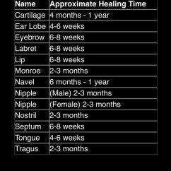 Diagram For 5 Gum Kvt 512 Wiring Piercing Healing Times- However They Can Vary From Person To | Body Piercings Pinterest ...