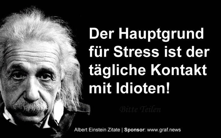 Albert Einstein Spruche Zum Nachdenken Ass Pinterest