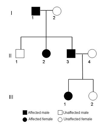 Pedigree chart, Science projects and Genetics on Pinterest