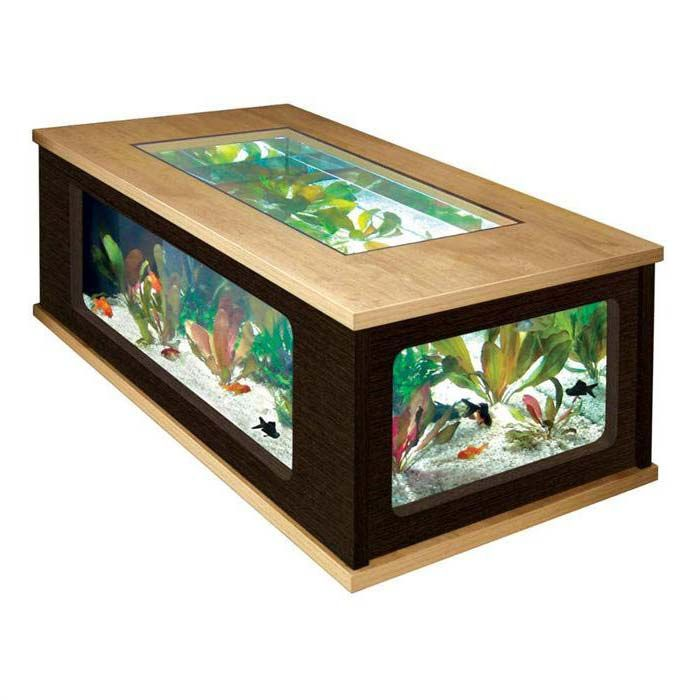 Best 25+ Fish tank coffee table ideas on Pinterest