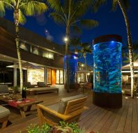 1000+ images about Outdoor Fishtanks on Pinterest ...