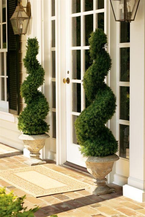 25+ best ideas about Front door plants on Pinterest