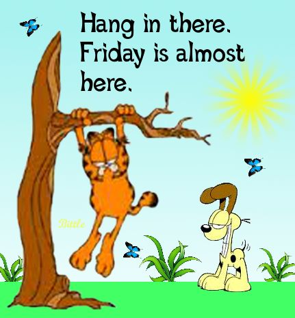 Hang in there it39s almost Friday quotes quote garfield