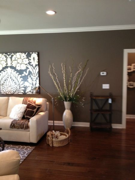 best paint color for living room with burgundy furniture home design modern wall -- sherwin williams sw7040 smokehouse ...