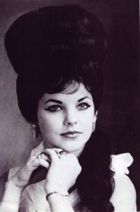 25+ best ideas about Priscilla presley on Pinterest