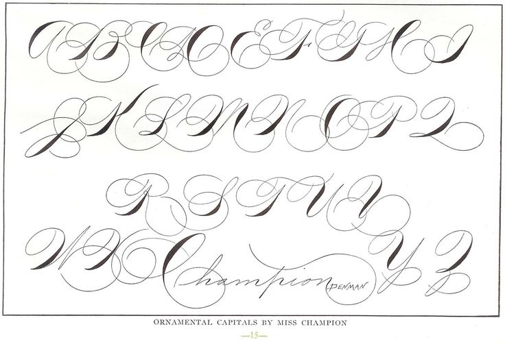 75 best images about calligraphy, hand lettering and