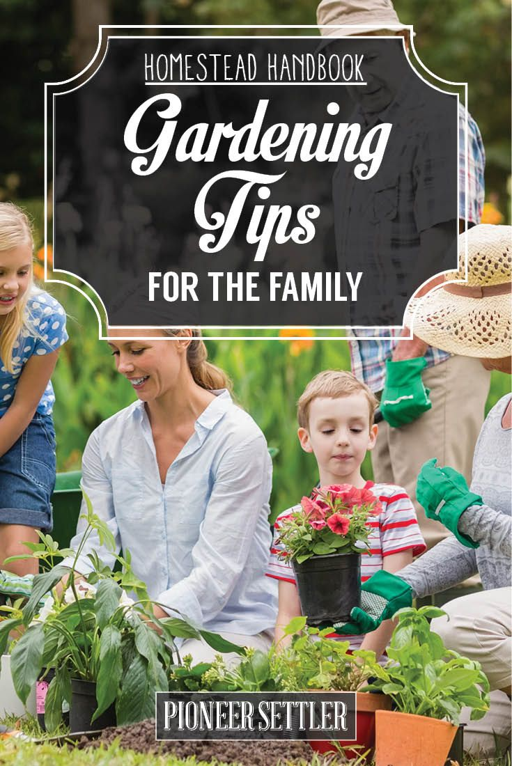 17 Best Images About Fundraising Ideas For Garden Clubs On