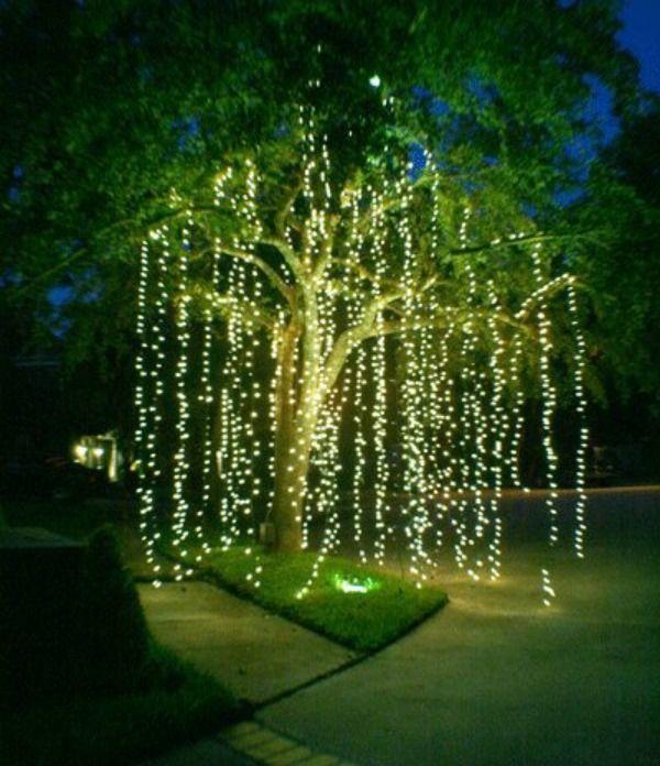 25 Best Garden Lighting Ideas On Pinterest Landscaping Backyard