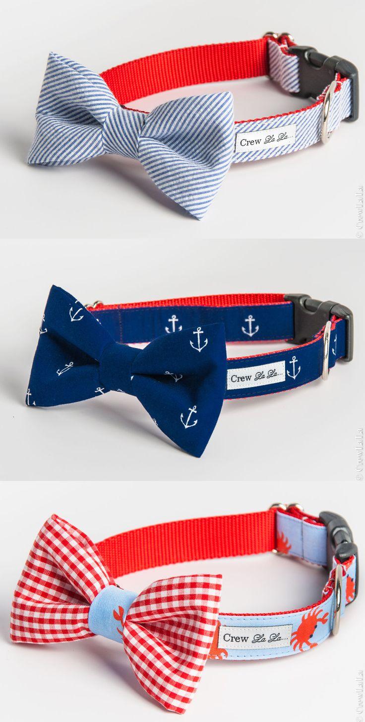 25+ best ideas about Dog Collars on Pinterest