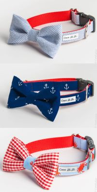 25+ best ideas about Dog Collars on Pinterest