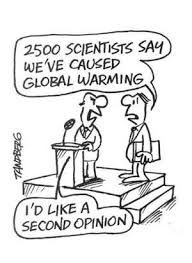 300+ best images about Best Climate Cartoons on Pinterest