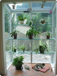 16 best images about Garden Window Ideas on Pinterest