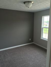 Best Carpet For Light Grey Walls