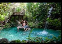 1000+ ideas about Indoor Pond on Pinterest | Indoor ...