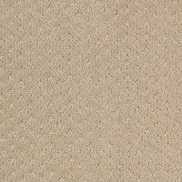 1000+ ideas about Carpet Samples on Pinterest
