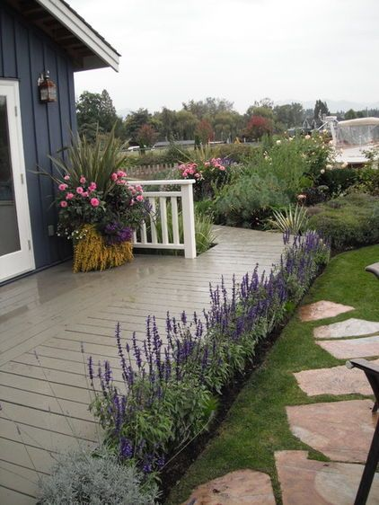 171 Best Images About All Lavender Gardens On Pinterest Gardens