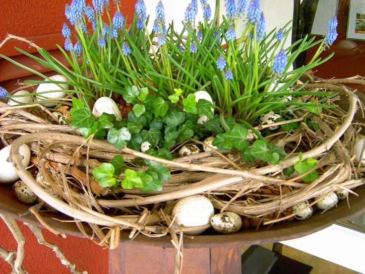 Pflanzen Im Geschlossenen Glas pflanzen im glas