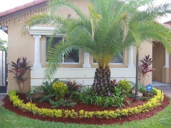 tropical florida gardening