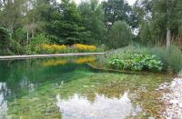 17 Natural Swimming Pools You Wish Were In Your Backyard ...