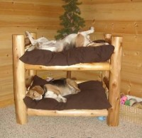 Double decker pet bed, so cute   Furry Love    Pinterest ...