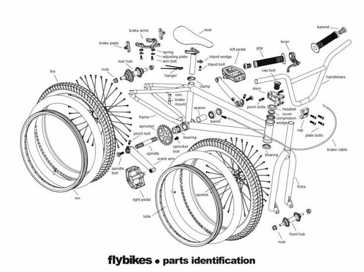 engineering diagram of brain