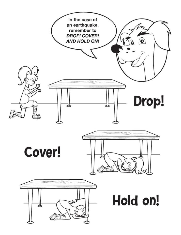 25+ best ideas about Earthquake safety on Pinterest