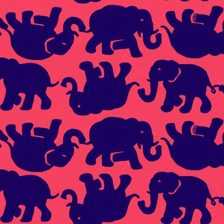 Lilly Pulitzer Fall Wallpaper Lilly Pulitzer Kissy Pink Tusk In Sun Patterns We Love