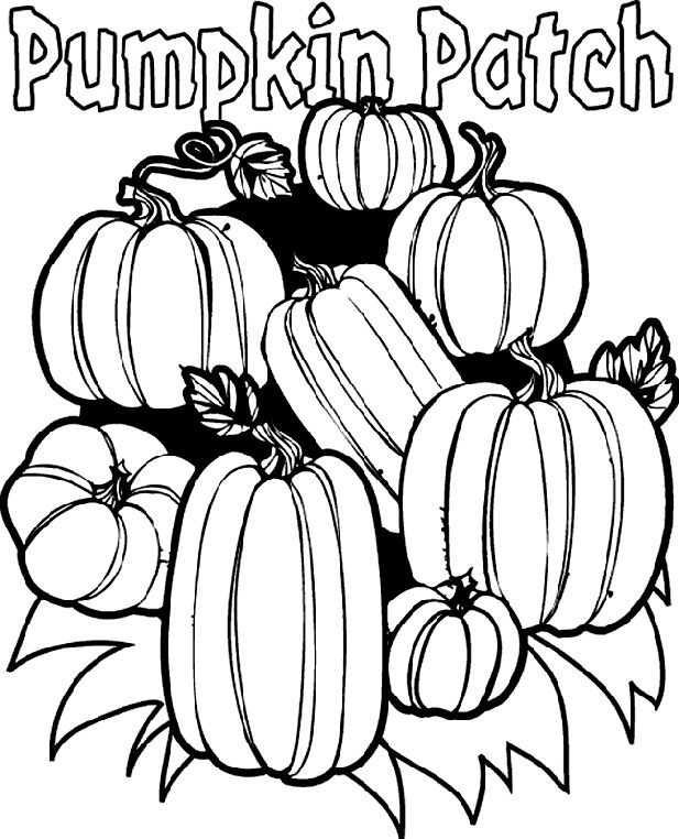 free printable Pumpkin Patch coloring page- bold lines