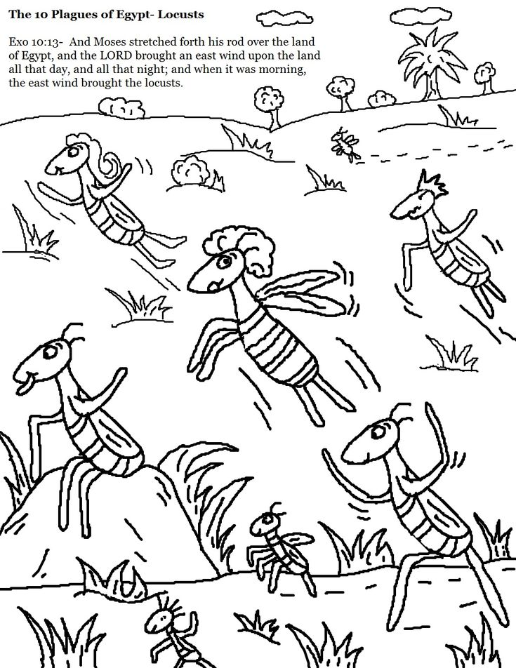 the 10 Plagues of Egypt Locusts Coloring Pages.jpg 1,019