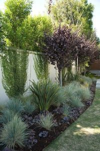 25+ best ideas about Drought Tolerant Landscape on ...