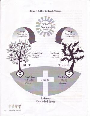 CCEF sanctification chart | TANC Illustrations | Pinterest