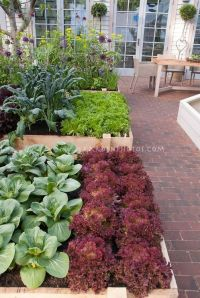 17 Best images about Garden BEDS on Pinterest | Gardens ...