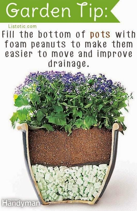 534 Best Images About Gardening Tips Tricks & Clever Ideas On