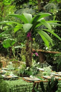 1000+ images about Rainforest theme party on Pinterest ...