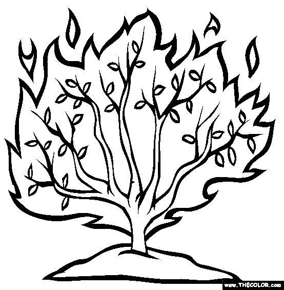 166 best images about bible class ideas on Pinterest