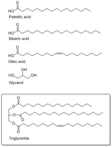 17 Best images about Organic Chemistry on Pinterest