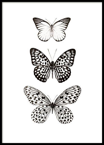 25+ beste ideeën over Kunst Met Insecten op Pinterest