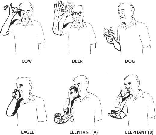 148 best images about Sign Language on Pinterest