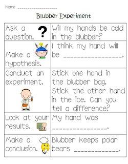 Blubber Experiment Worksheet