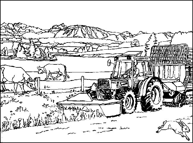 Best 20+ Farm coloring pages ideas on Pinterest