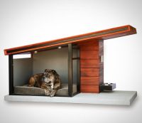 25+ best ideas about Plastic dog crates on Pinterest ...