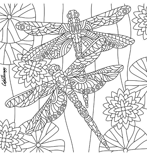 529 best images about Coloring Pages on Pinterest