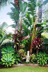 25+ best ideas about Tropical backyard on Pinterest ...