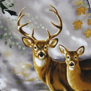 11 best images about Deer panels on Pinterest