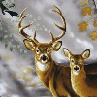 11 best images about Deer panels on Pinterest | Quilt ...