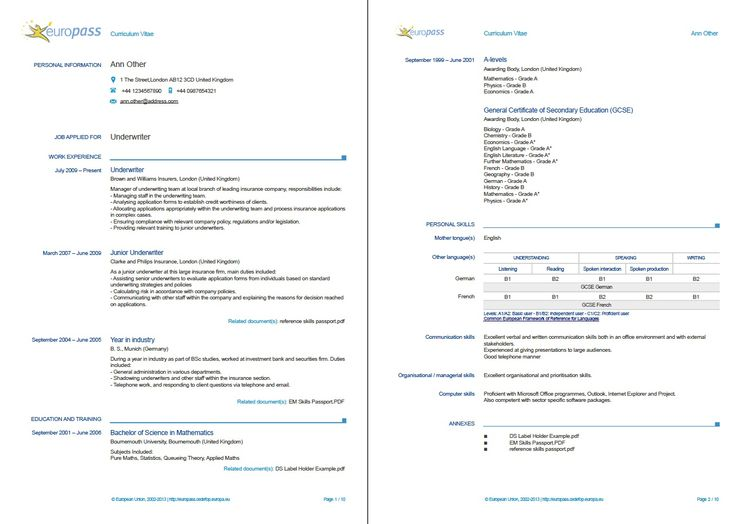 Example Of A Europass CV More Examples Europass
