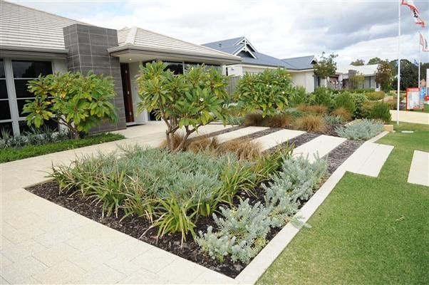 Harveyjenkin Landscapes Perth Modern West Australian Native Garden
