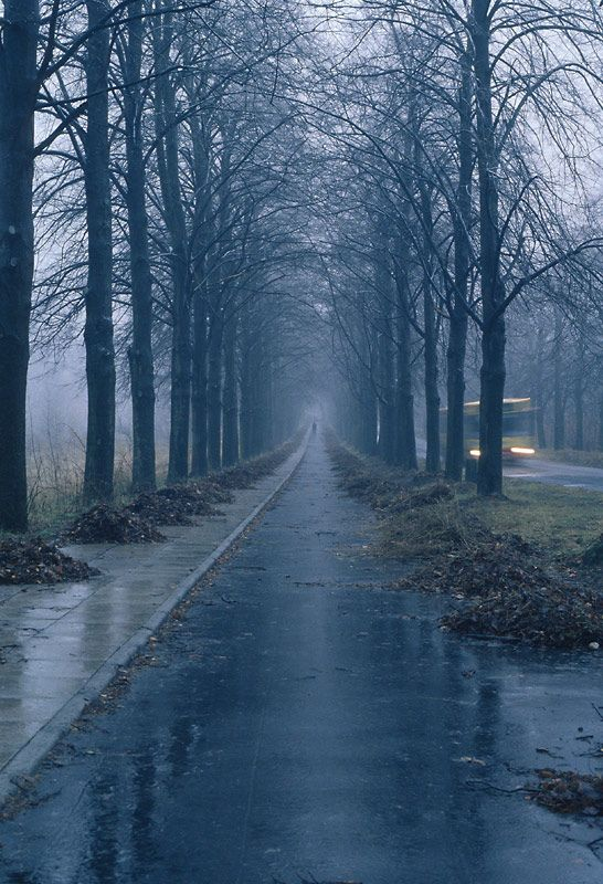 Falling Water Live Wallpaper 1000 Images About Rainy Days On Pinterest Rain