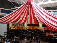 Circus Theme Decorating Ideas | Circus Prom Decorations ...