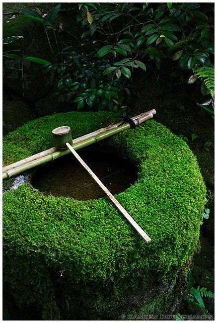 Mossy Chozu-bachi of Daitoku-ji temple, Kyoto, Japan - Chozu-bachi 手水鉢  is a vessel originally designed to keep water for rinsing one's mouth and cleansing one's body before entering the sacred precincts of a Shinto shrine or a Buddhist temple in Japan.: